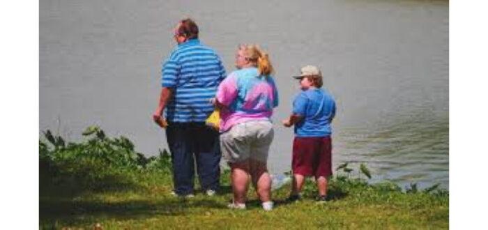 Six Types of Obesity